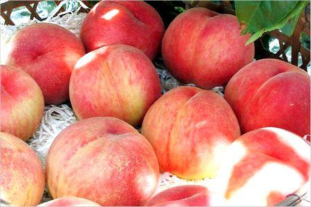 桃の果実酢