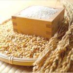 米酢の作り方や効果、穀物酢との違いは?人気レシピも紹介