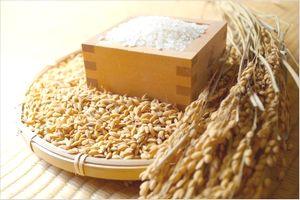 米酢のレシピ